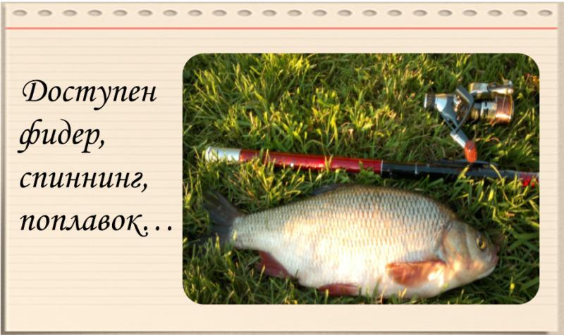 Рыбалка в деревне.